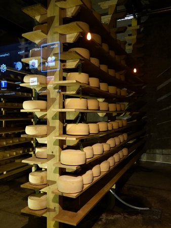 Ajijic, México: Cheese Cellar.