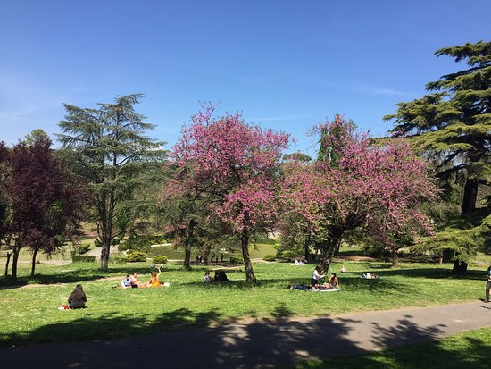 Roma, Itália: Fabulous variety of culture and activities tone found in Rome