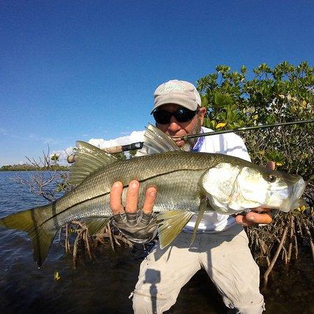 Ozello, فلوريدا: Spring morning slot snook