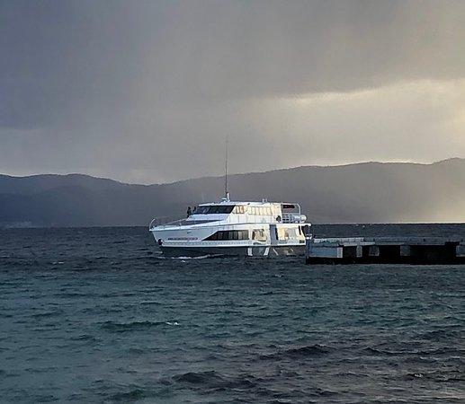 Encounter Maria Island ferry