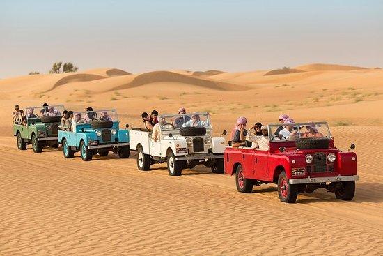Experiencia en el desierto: cena y...