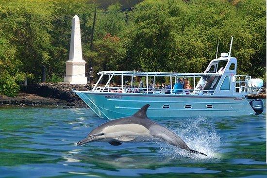 Bahía de Kealakekua y aventura de...