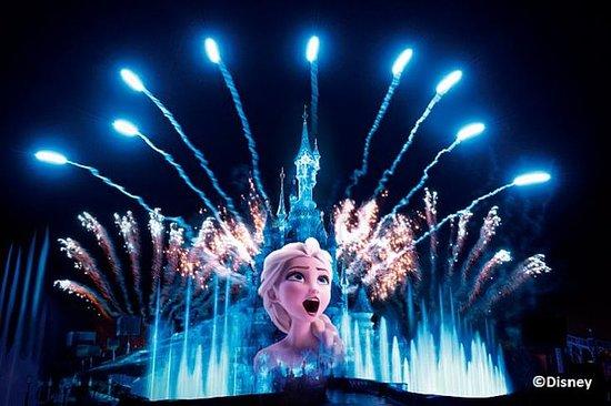 Toegangskaartje voor Disneyland ...