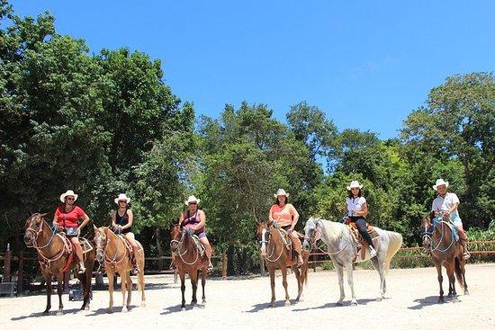 Ridning og Cenote Svømmer fra Cancun...