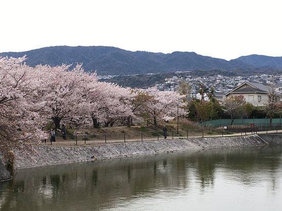 Shinike Pond