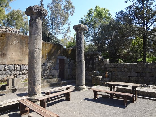 Ancient Katzrin Village and Synagogue: Ruins on the grounds