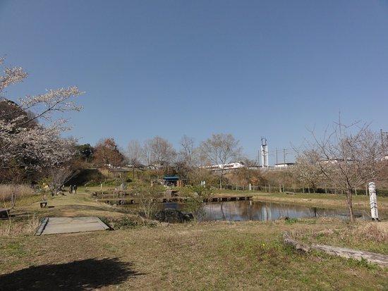 Hitachi, Japan: 赤羽緑地風景