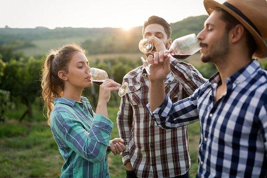 尼亚加拉 - 徒步旅行和葡萄酒之旅