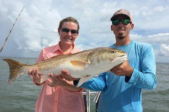 Pesca de medio día en la bahía y en...