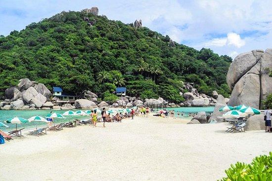 从Koh Samui乘坐Insea快艇前往Koh Nangyuan和Koh...
