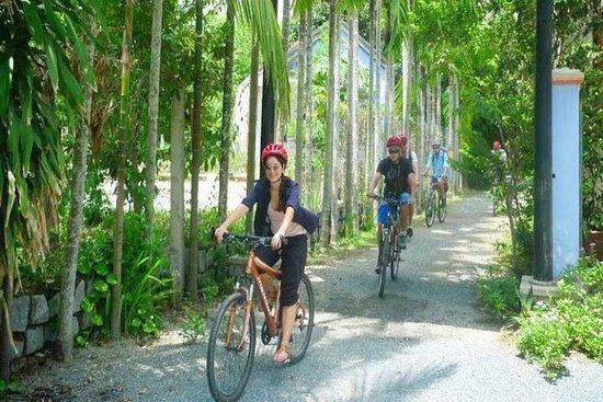Nha Trang: visite privée à vélo de...
