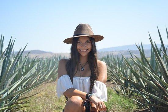 Tour di tequila artigianale