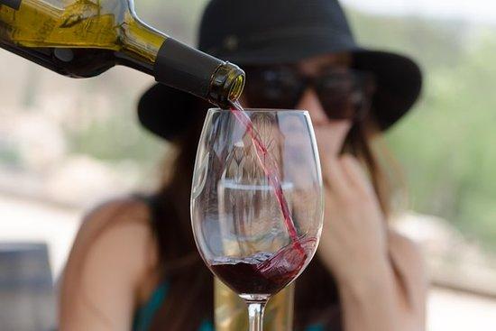 Wine tasting Puerta del Lobo