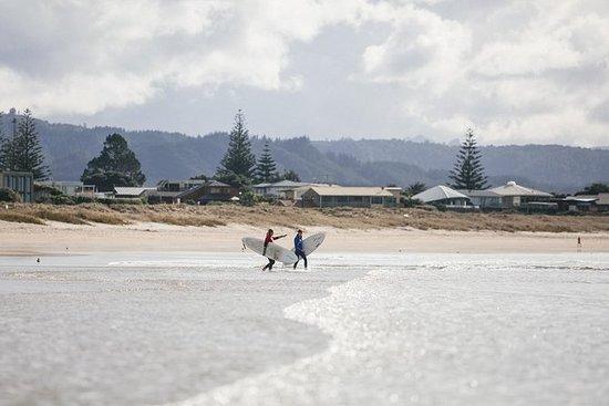 Paquete de surf progresivo
