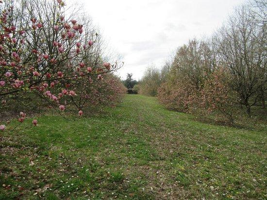 Arboretum de la Roche-Guyon