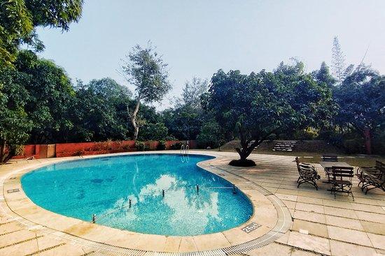 Pool - Picture of Serenity Corbett Resort, Jim Corbett National Park - Tripadvisor