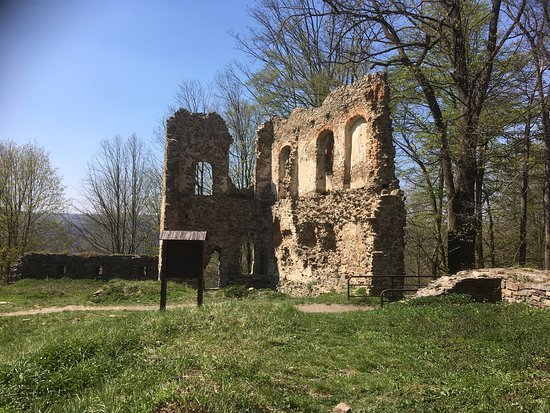 Vikštejn u Radkova Ruin