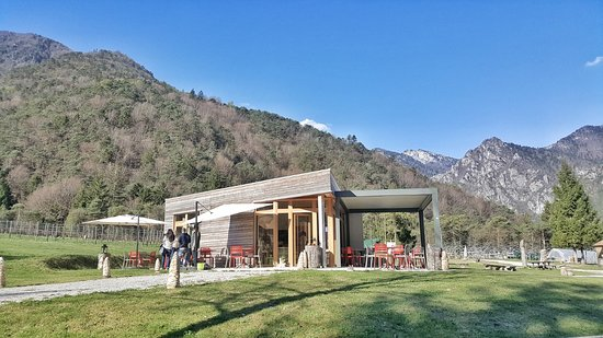 Azienda Agricola Bosc del Meneghi