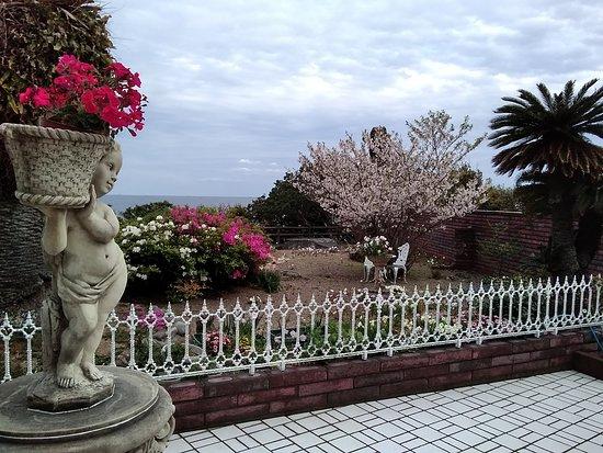 Cafe Panorama: カフェパノラマの玄関から見た庭の眺めです。
