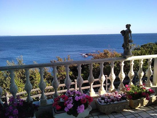 Cafe Panorama: 午後のテラス席から見た太平洋の眺めです。