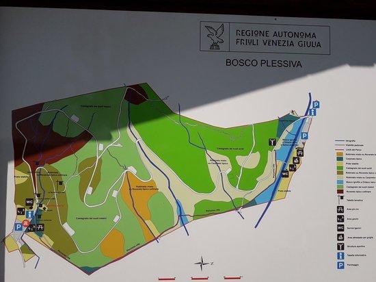 Bosco di Plessiva