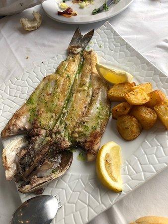 Melilla-billede
