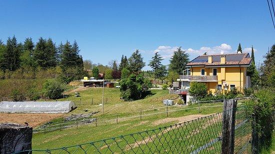 Agriturismo Ca' sul Bosc Photo