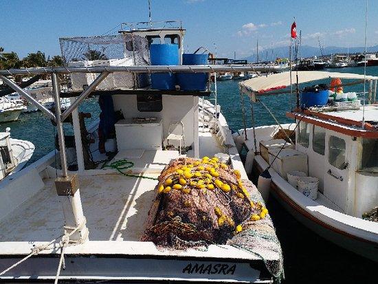 Cesme, Thổ Nhĩ Kỳ: YILDIZBURNU Marina Ilıca ÇEŞME