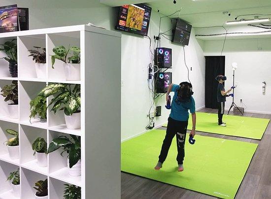 Flynns VR