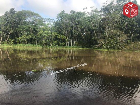 Iquitos Amazon Region, Peru: Wo das Wasser aussieht wie Milchkaffee. Amazonas Peru. | Where the water looks like milk coffee. Amazon Peru.
