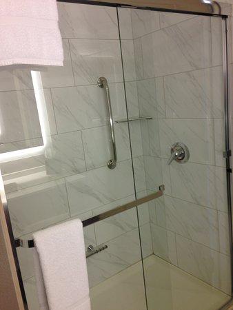 room 910 has a nice shower (no bathtub)