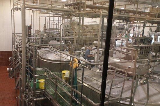 Tillamook Creamery: The factory
