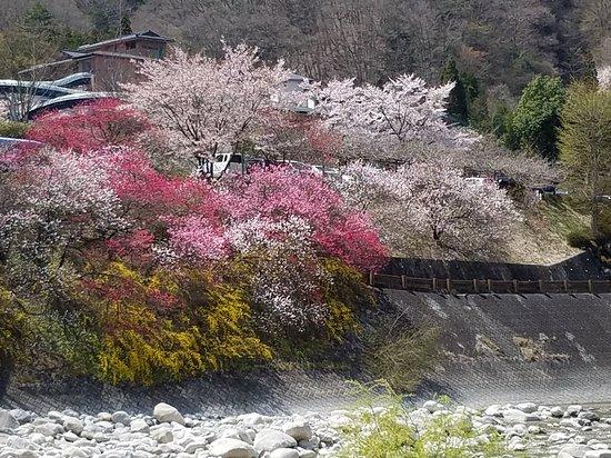 Hirugami Onsenkyo: 橋のたもと