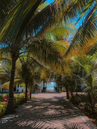 Palmazul Hotel & Spa: Simply amazing...