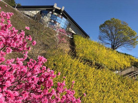 Fuefuki, اليابان:  PAの駐車場が博物館につながっている。