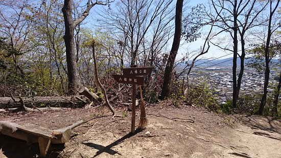 Ruins of Mt. Hachiman Castle: 分かれ道
