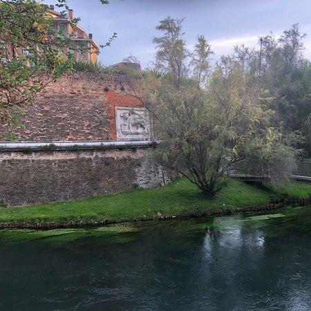 Bello e comodo albergo situato sulle mura storiche del '500 di Treviso con camere molto grandi e luminose.Ottima posizione e parking gratis