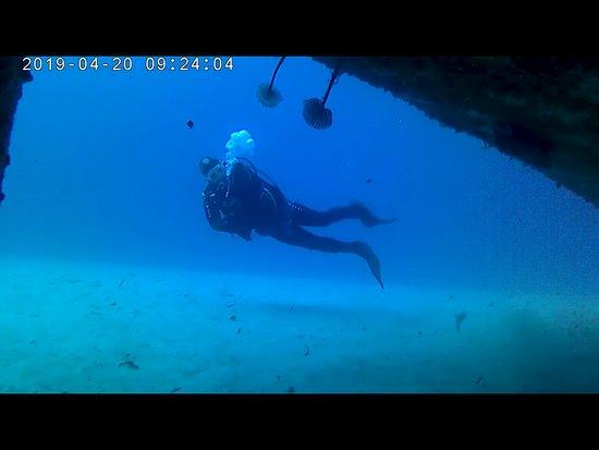 Aquatica Dive Centre: Alex my mentor and whatch dog :)
