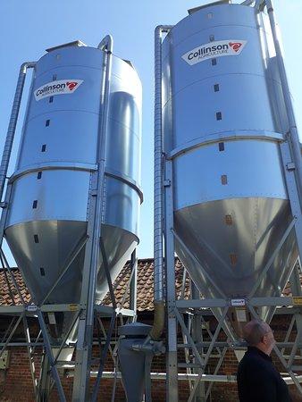 St. Peter's Brewery: Barley storage tanks