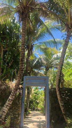 Joyo Island Photo