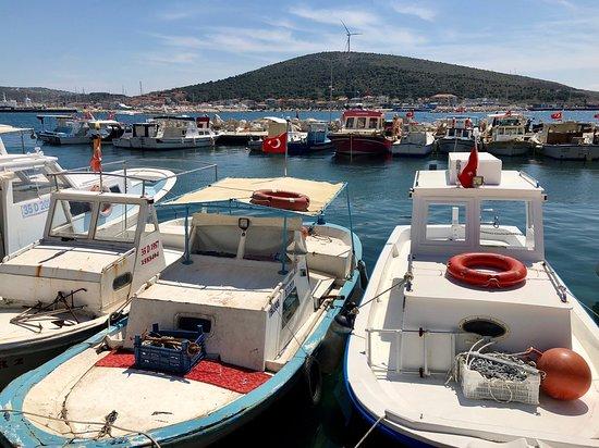 Cesme, Thổ Nhĩ Kỳ: Çeşme Balıkçı Barınağı