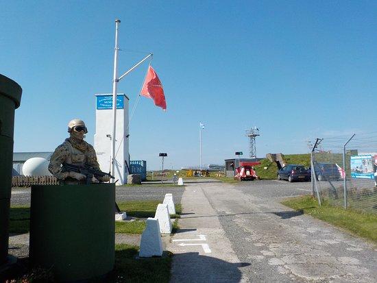 Gate guard