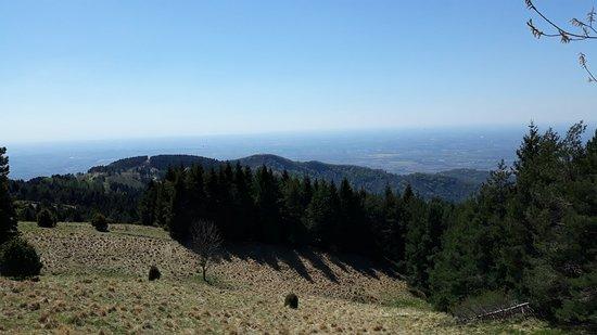 Torreano, Italia: Monte Joanaz