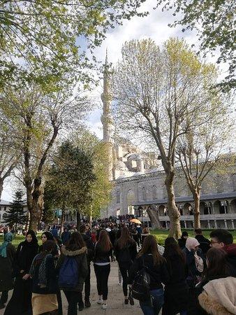 Moschea blu, peccato in ristrutturazione
