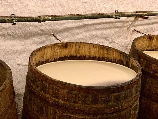 Pilsner Urquell Brewery: Besichtigung