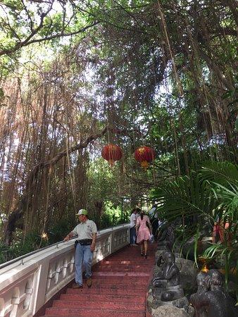 The Golden Mount (Wat Saket): Beautiful nature along the way