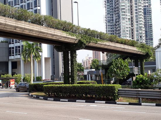 Holiday Inn Singapore Atrium: viaduto passarela proximo onde passa o bus off