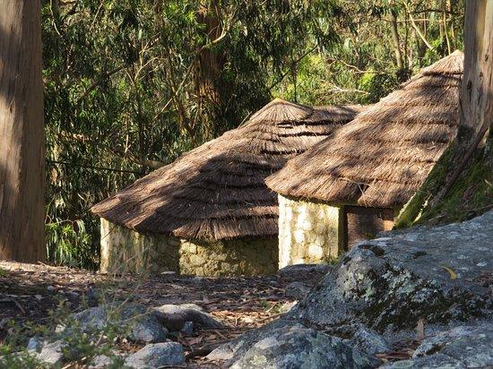 Castro de S. Lourenco: Telhados de colmo 