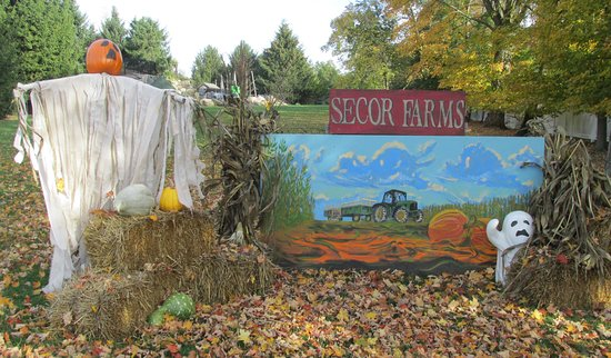 Secor Farms