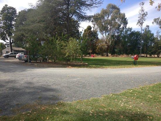 Grass area and Playground